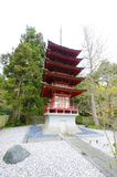 San francisco ogród japoński herbaty Obrazy Royalty Free