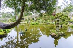 San francisco ogród japoński herbaty Zdjęcia Stock