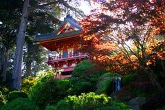 San francisco ogród japoński herbaty. Obrazy Royalty Free