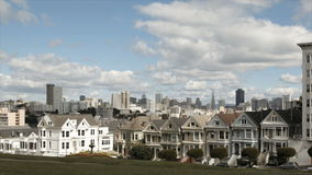 San Francisco Painted Ladies stock video