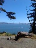 San Francisco Park royalty-vrije stock afbeeldingen