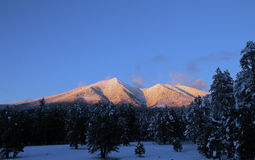 San Francisco peaks Royalty Free Stock Image