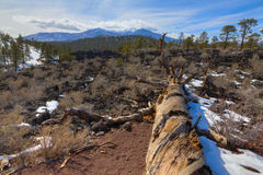 San Francisco Peaks Royalty Free Stock Images