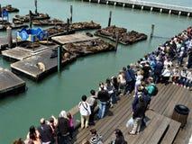 San Francisco Pier 39 stock photo