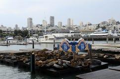 San Francisco Pier, EUA Imagens de Stock Royalty Free