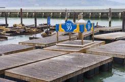 San Francisco pier 39 Royalty Free Stock Photo