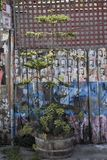 San Francisco`s world recognized Balmy Alley murals, 33. San Francisco`s Mission District has the highest concentration of murals of any neighborhood in the stock photo