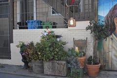 San Francisco-` s Welt erkannte Balmy Gassenwandgemälde, 39 stockfotos