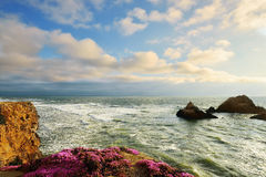San Francisco scenery Royalty Free Stock Images