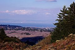 San Francisco scenic. Scenic view of San Francisco city and bay viewed from countryside, California, U.S.A Royalty Free Stock Image