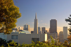San Francisco Skyline. As seen from the base of the Coit Tower Stock Image