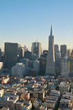 San Francisco Skyline. A view on San Francisco downtown and the Transamerica Tower from the Coit Tower Royalty Free Stock Photo