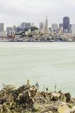 San Francisco Skyline, California Fotos de archivo libres de regalías