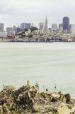 San Francisco Skyline, Kalifornien Lizenzfreie Stockfotos