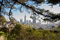 San Francisco Skyline Nature View. A view on San Francisco downtown skyline and the Transamerica Tower from the Coit Tower Royalty Free Stock Image