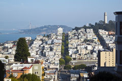 San Francisco skyline scene. Scenery near Coit Tower in San Francisco Royalty Free Stock Photography