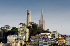San Francisco. A skyline view of downtown San Francisco Coit tower and trans america buildings Stock Image