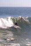 San Francisco Surfers. Surfers in San Francisco Bay below the Golden Gate Bridge Royalty Free Stock Photography
