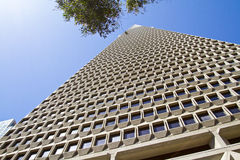 San Francisco Transamerica Pyramid Building Stock Photos