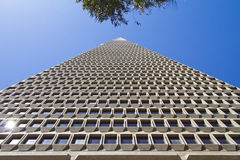 San Francisco Transamerica Pyramid Building Stock Images