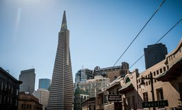 San Francisco Transamerica Pyramid Royalty Free Stock Photo