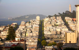 San francisco view. From an hill Royalty Free Stock Photos