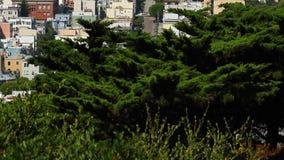 San Fransisco śródmieścia ulica zbiory