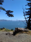 San Fransisco park Obrazy Royalty Free