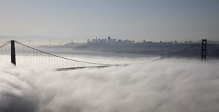 San Fransisco Skyline Stock Photography