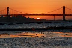 San Fransisco zatoki zmierzch Widzieć od portu Oakland Obraz Royalty Free