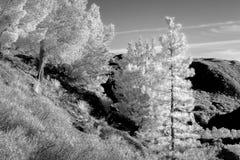 San Gabriel Mountains en noir et blanc infrarouge Photographie stock
