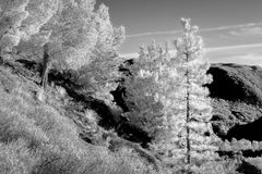 San Gabriel Mountains in Infrared Black and White Stock Photography