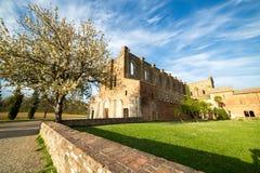 San Galgano - Toskana Stockbild