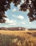 San-galgano und Baum im Herbst Stockfotografie