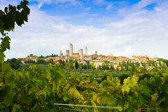San gimignano. Seen from a winery stock image