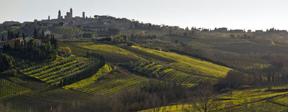 San Gimignano. View of tuscan hills with San Gimignano on the background Royalty Free Stock Image