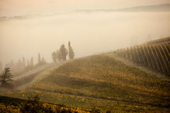 San Gimignano at the crack of Dawn. San Gimignano in the morning mist Stock Images
