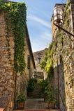 San Gimignano gammal gata Royaltyfria Foton