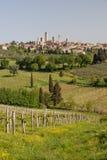 San Gimignano Royalty Free Stock Photo