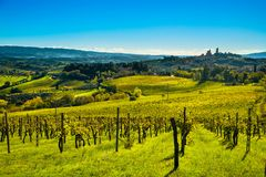 San Gimignano panoramic medieval town towers skyline and vineyar Stock Image
