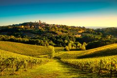 San Gimignano panoramic medieval town towers skyline and vineyar Royalty Free Stock Photography