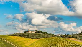 San Gimignano surroundings. Medieval farm near San Gimignano with vineyard in autumn royalty free stock photo