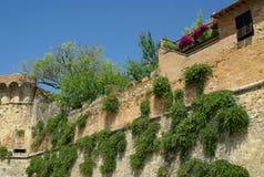 San Gimignano, Toscânia, Italy imagem de stock