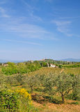 San Gimignano,Tuscany Royalty Free Stock Images