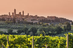 San Gimignano Royalty Free Stock Photography