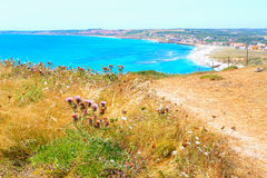 San Giovanni di Sinis beach on a summer day Royalty Free Stock Photo
