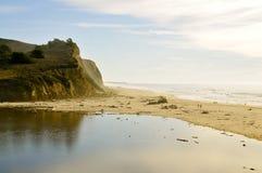 San Gregorio State Beach stock afbeelding