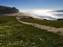 San Gregorio State Beach. Beautiful view of San Gregorio State Beach in San Francisco Stock Image