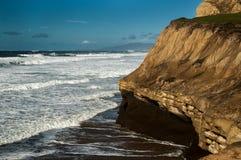 San Gregorio State Beach Landscape Fotografia Stock Libera da Diritti