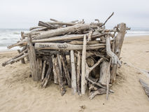 San Gregorio State Beach Stock Image